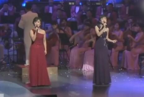 朝鲜艺术团唱韩国流行歌曲  不尴尬反而美如画