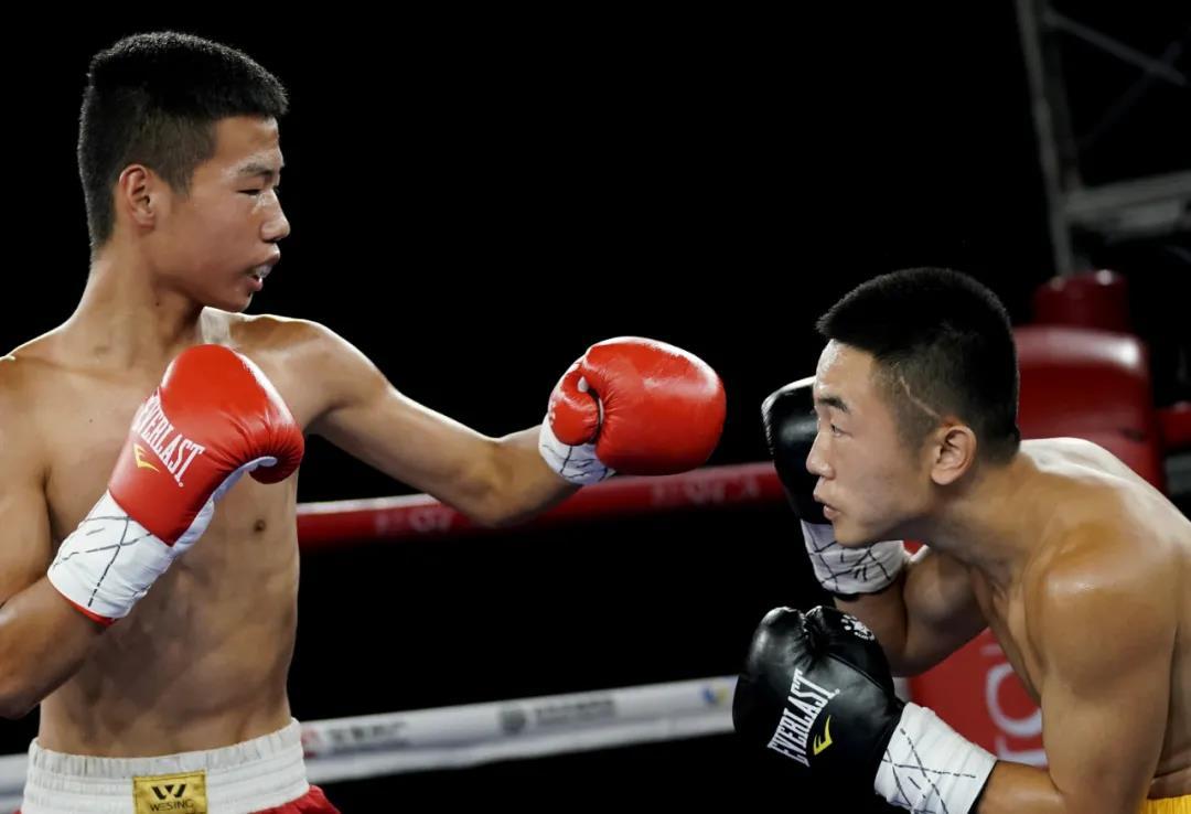 重量级对决上演逆转KO,WBO环球拳王杨永