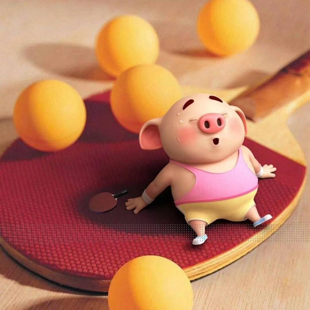 小笨说乒乓